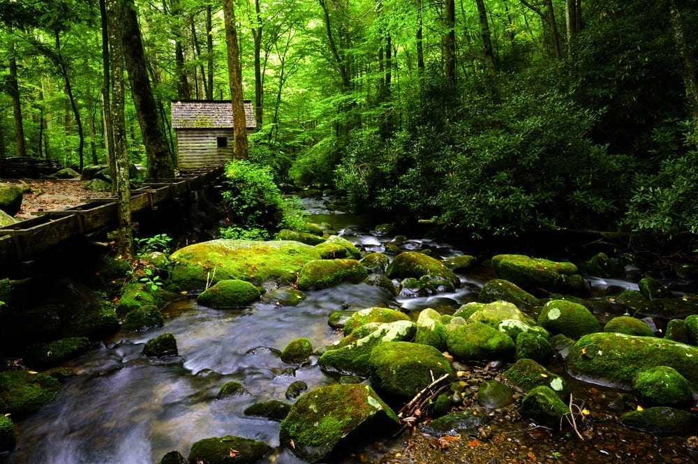 4 unexpected bonuses of staying at a secluded smoky mountain Secluded Cabins In Tennessee