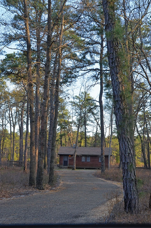 7 nj state parks where you can rent a cabin right now Atsion Lake Cabins