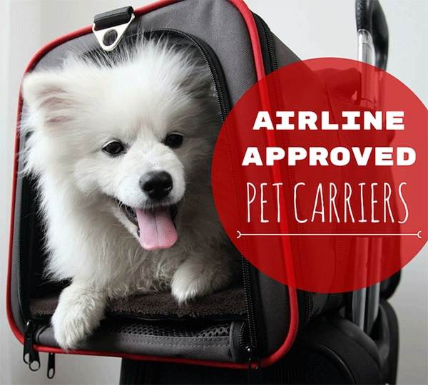 8 best airline approved pet carriers for in cabin flights Flying With A Dog In Cabin