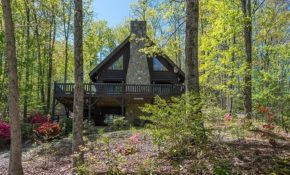 cozy pet friendly cabin on the lake eagles nest updated Lake George Pet Friendly Cabins