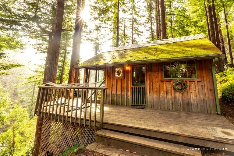 inviting cabins in the trees surrounded redwoods near big sur california Cabins In Big Sur