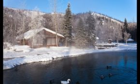 picturephoto cabins with swans and ducks in winter chena Chena Hot Springs Cabins