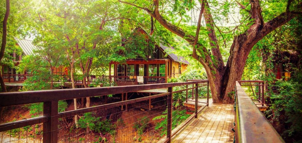 river road treehouses best texas travel River Road Cabins