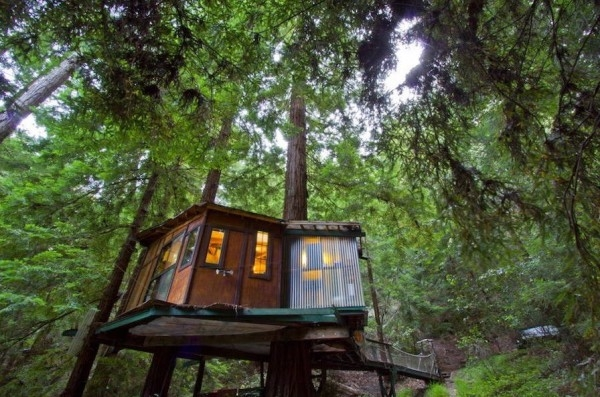 tiny treehouse cabin in the redwoods Santa Cruz Cabins