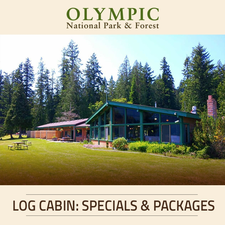 accommodations at log cabin resort olympic national park Cabins In Olympic National Park