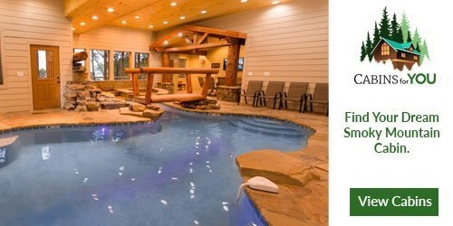 cabins for you pigeon forge cabin rentals pigeonforge Pigion Forge Cabins