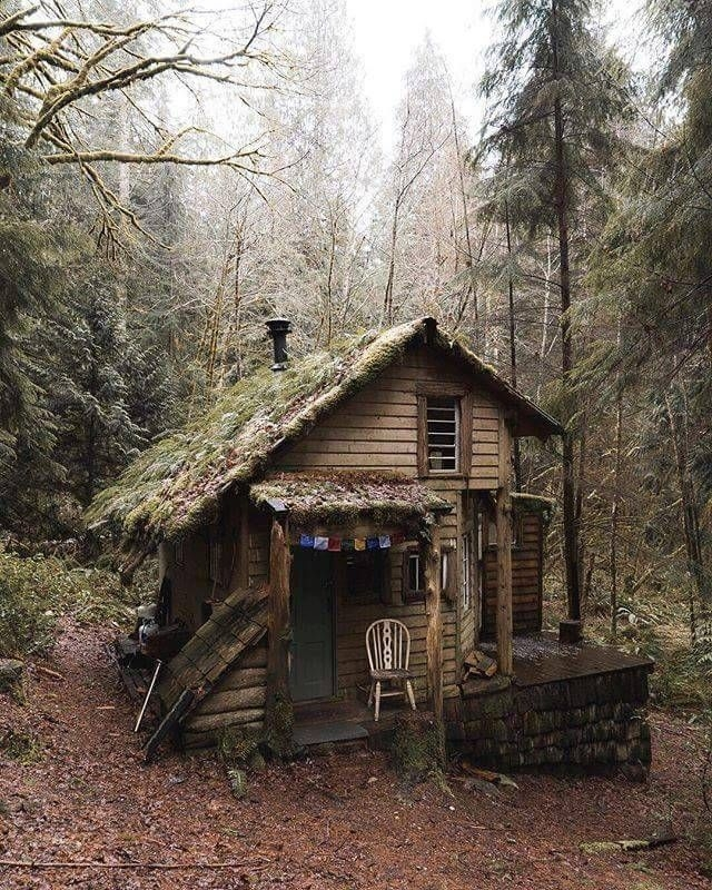 who would love to stay in this tiny cabin olympic national Cabins In Olympic National Park