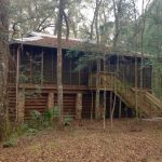cabins at suwannee river state park picture of suwannee Suwannee River State Park Cabins