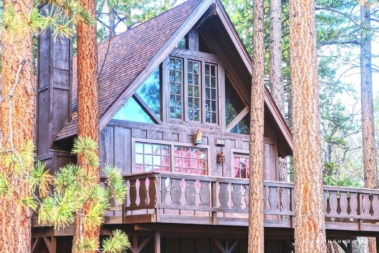 pet friendly luxury cabin with rustic interior near big bear lake california Pet Friendly Cabins In Big Bear