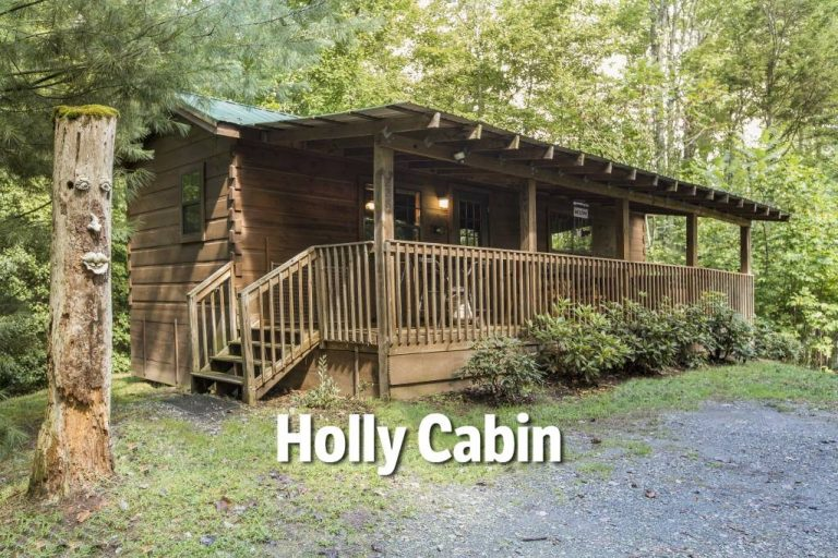 pet friendly nc mountain cabins dogs welcome Pet Friendly Cabins In Nc