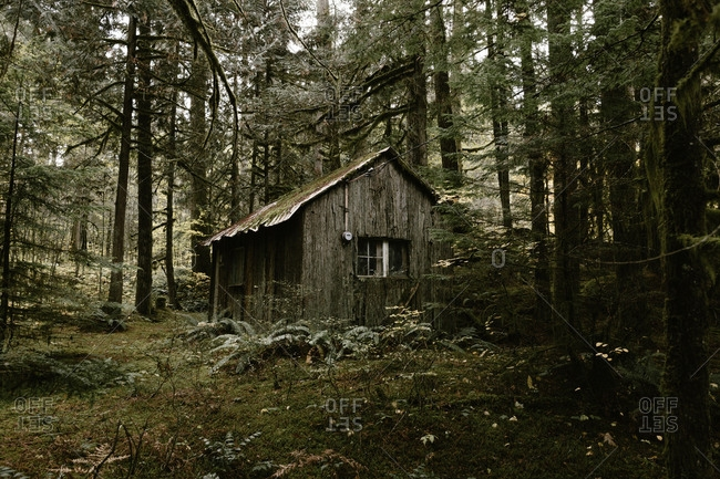 cabin in the woods stock photos offset Cabin In The Woods