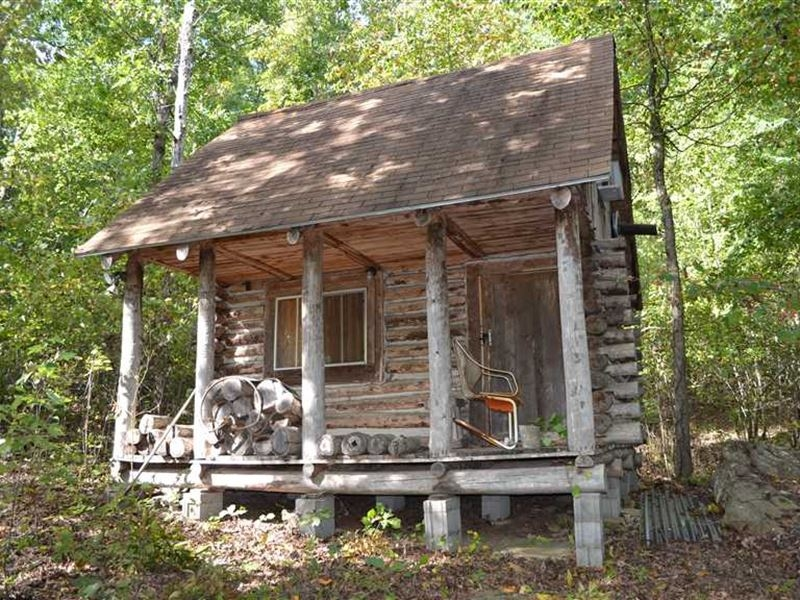 hunting cabin in the woods with 40 farm for sale in Hunting Cabin