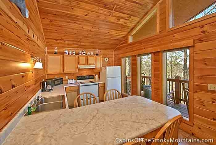 pigeon forge cabin in the woods from 12000 Cabins In The Woods