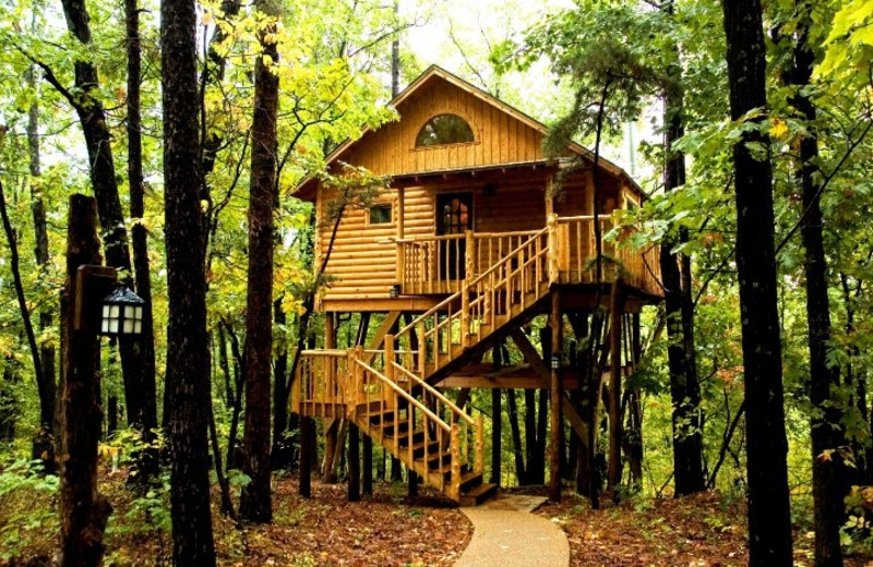 7 treehouses in arkansas for a vacation in the woods Treehouse Cabins Arkansas