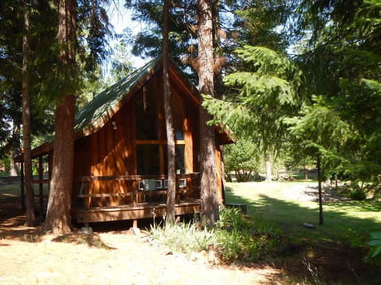 cabin 4 picture of trout lake cozy cabins tripadvisor Trout Lake Cabins