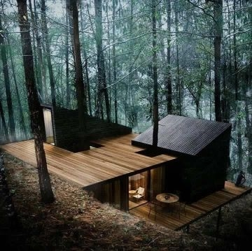 modern cabin house in the woods architecture forest house Forest Cabin Designs