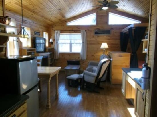 14 cabin picture of d bay cabins port blandford Cabin Cottage Blandford