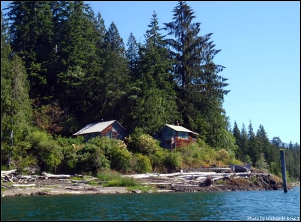 stay play hiking lake quinault on washingtons olympic Lake Quinault Cabin Rentals