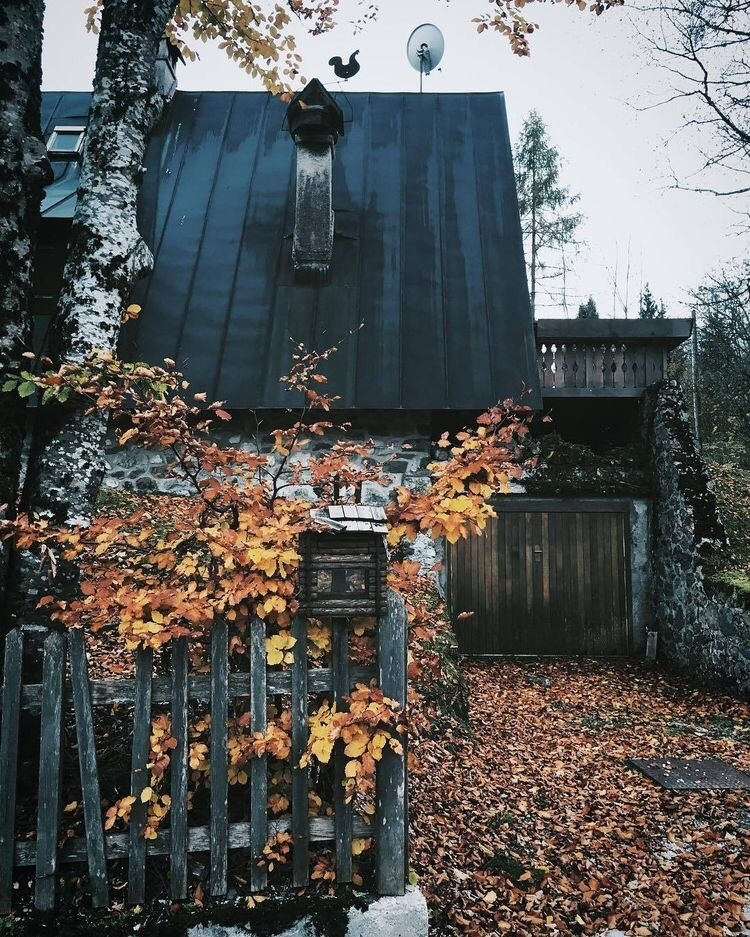 witch aesthetic cabin house and autumnblr image 6325074 Cabin Cottage Aesthetic