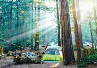12 top rated campgrounds near big sur pfeiffer big sur Big Sur Camping Cabins