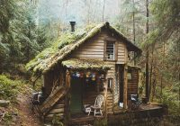 cabin hidden away in woods of washington state therapy Cabins Washington State