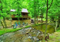 cabin rentals near bryson city nc pet friendly cabins Lake Cabin Rentals Nc