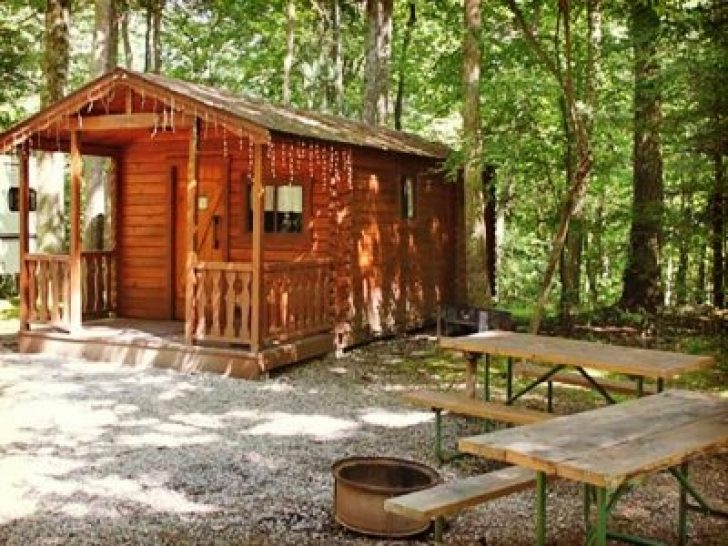 Permalink to Simple Cook Forest Cabins Ideas
