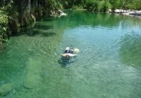 concan tx clear water is great for snorkeling too the Frio River Cabins Concan Tx