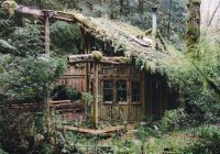 forest cabin in washington state in 2020 outdoor survival Cabins Washington State