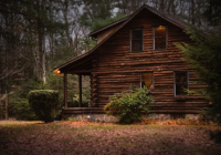 log cabins choosing the best wood options for a log cabin Cabin Wood