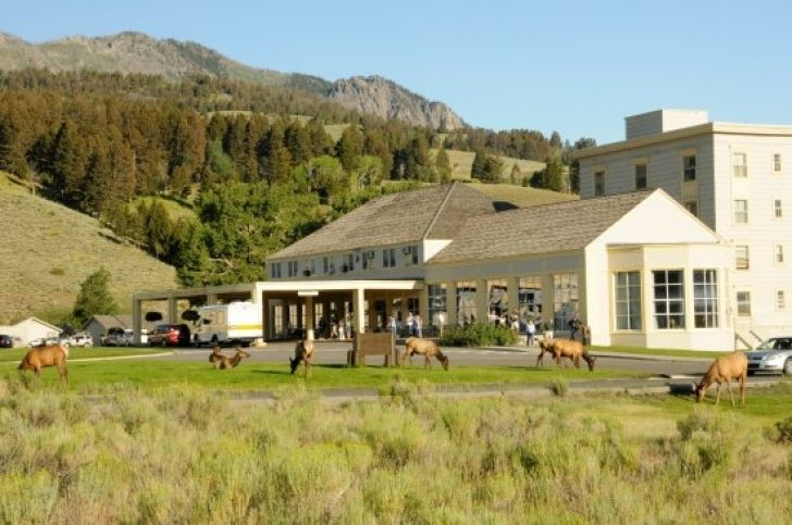 Permalink to Simple Mammoth Hot Springs Hotel & Cabins