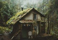 off grid architecture on instagram wood cabin Cabin Cottage Aesthetic