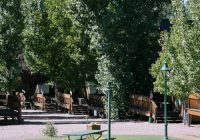 pet friendly cabin lodging rates in strawberry az cabins Cabins In Strawberry Az