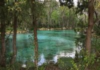 the 10 best crystal river vacation rentals cabins with Crystal River Cabins